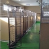 Inside Our Kennels